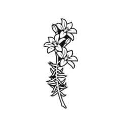 saskatchewan prairie lilly design for headstones